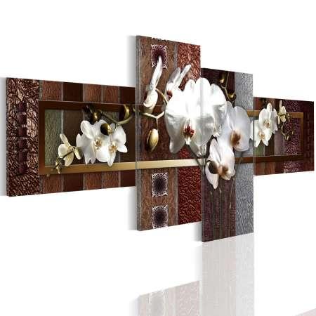 Obraz  Elegancka orchidea