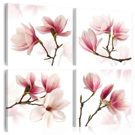 Obraz  Romantyczny róż