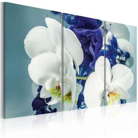 Obraz  Chimeryczne orchidee