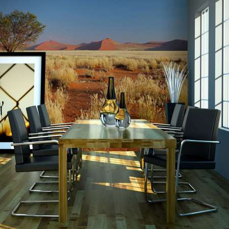 Fototapeta  Pustynny krajobraz, Namibia