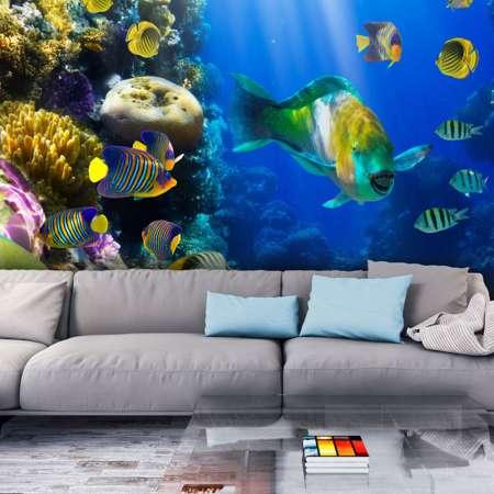 Fototapeta  Podwodny raj