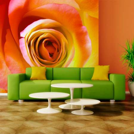 Fototapeta  Pustynna róża