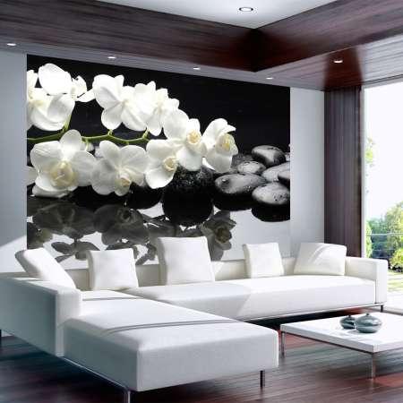 Fototapeta  SPA, kamienie i orchidea