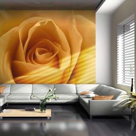 Fototapeta  Żółta róża  symbol przyjaźni