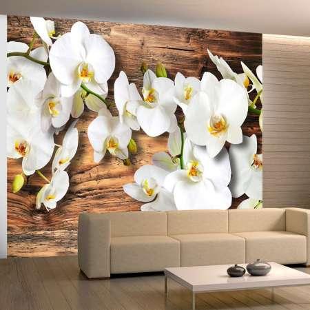 Fototapeta  Śnieżnobiałe orchidee