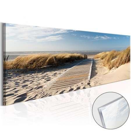 Obraz na szkle akrylowym  Dzika plaża [Glass]