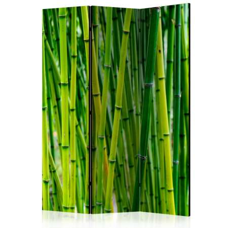 Parawan 3częściowy  Bambusowy las [Room Dividers]