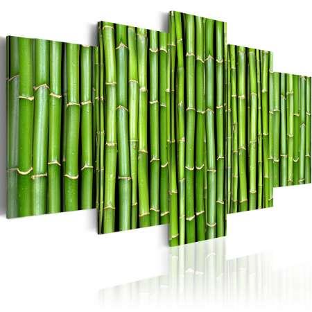 Obraz  Bambus  harmonia i prostota