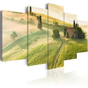 Obraz  Zielona Toskania