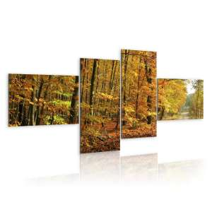 Obraz  Jesienna alejka pełna słońca