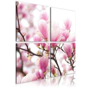 Obraz  Kwitnące drzewo magnolii