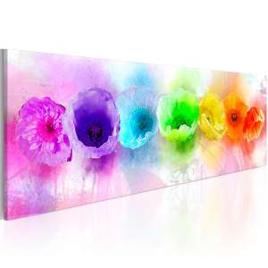 Obraz  Rainbowhued poppies