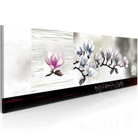 Obraz  Przebudzenie magnolii