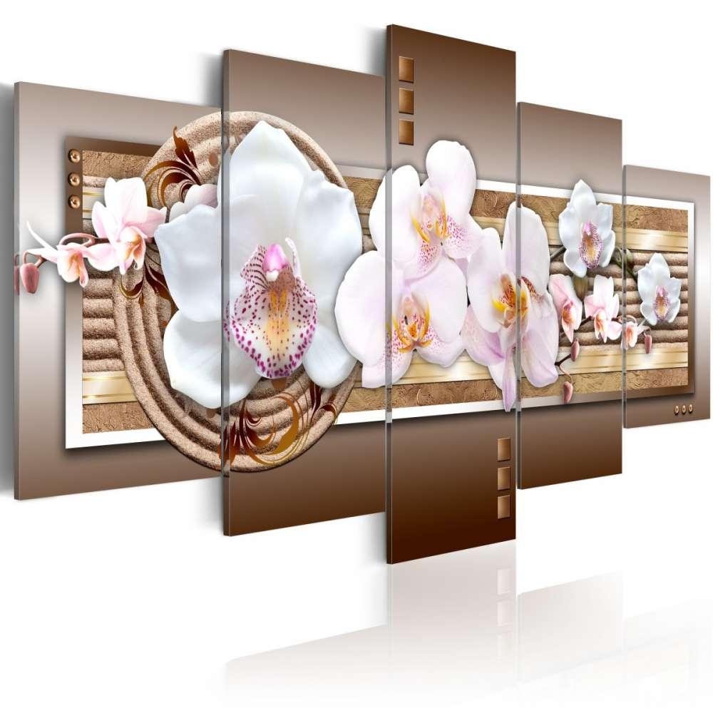 Obraz  Delikatność orchidei