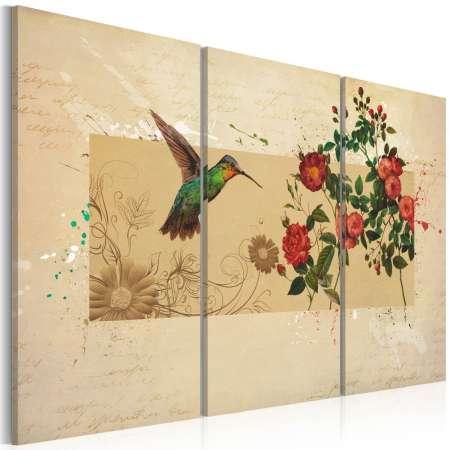 Obraz  Koliber i róże
