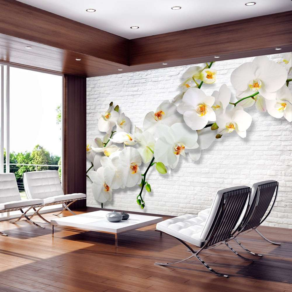 Fototapeta  Miejska orchidea