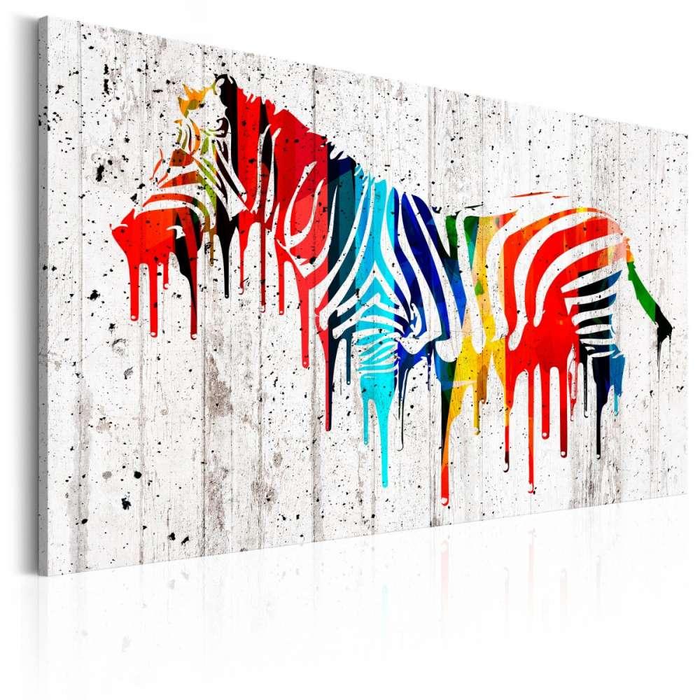 Obraz  Kolorowa zebra