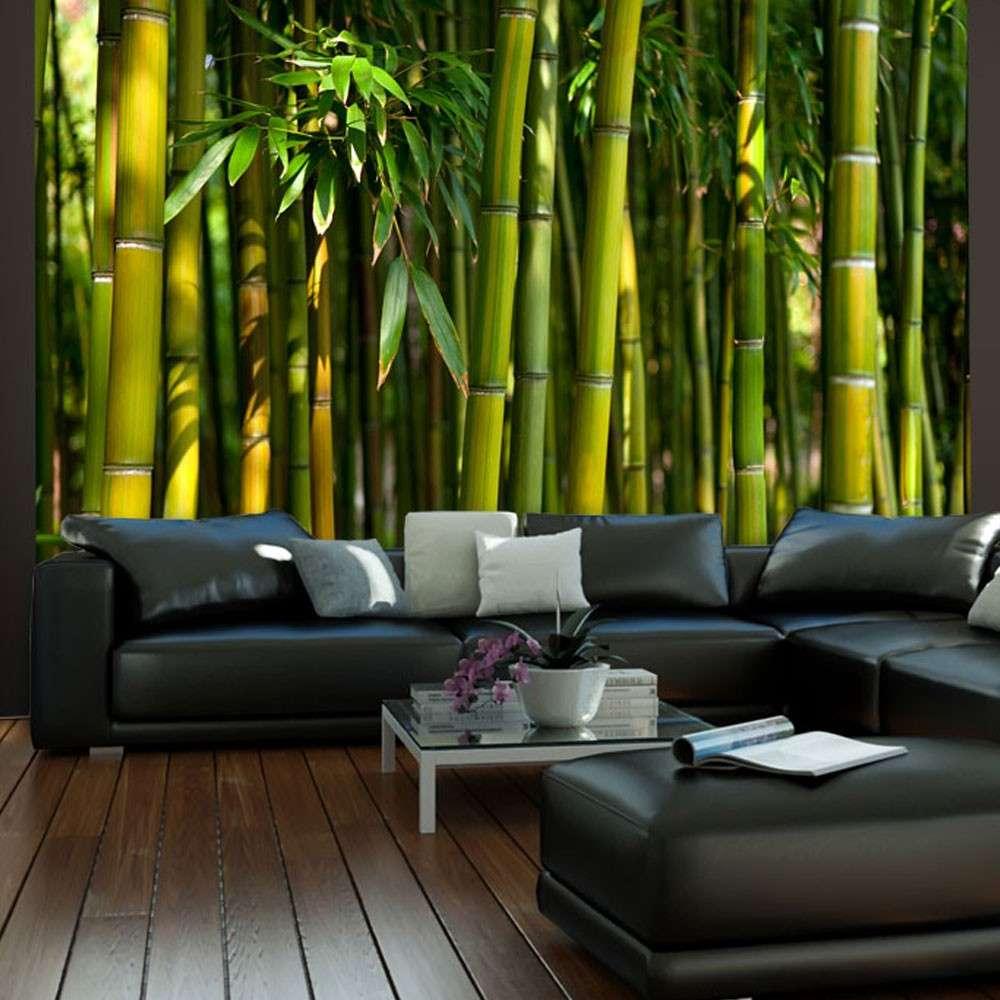Fototapeta  Azjatycki las bambusowy