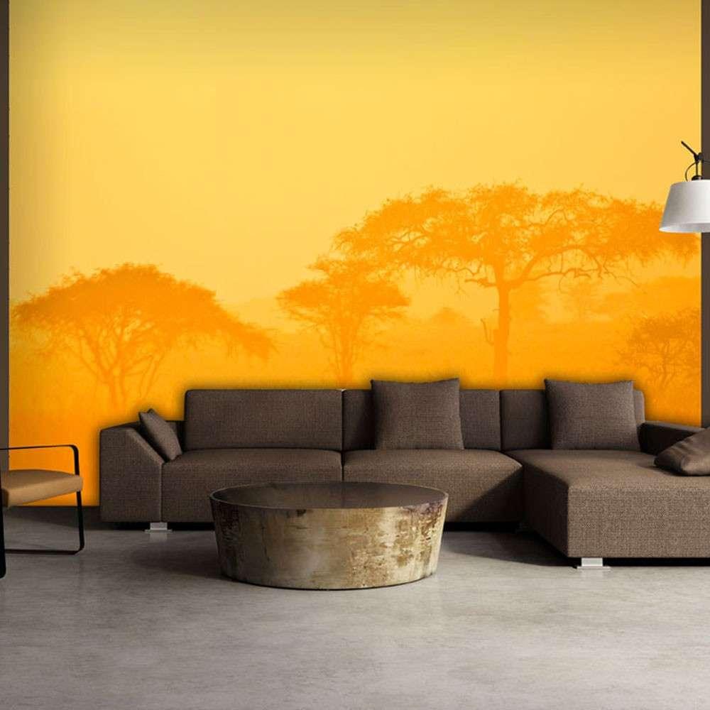 Fototapeta  Orange savanna