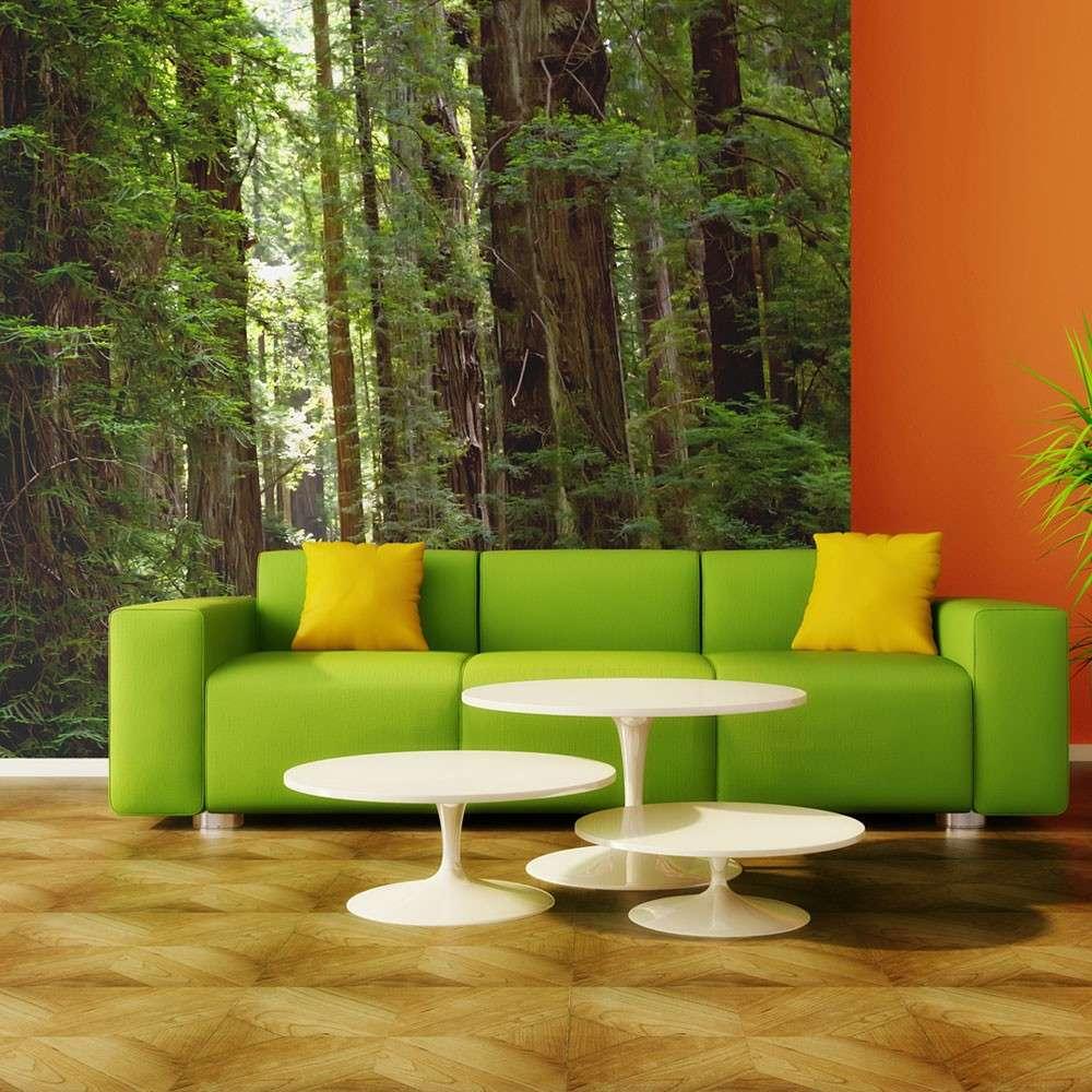 Fototapeta  Green forest