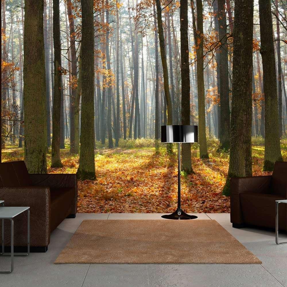 Fototapeta  Autumn trees