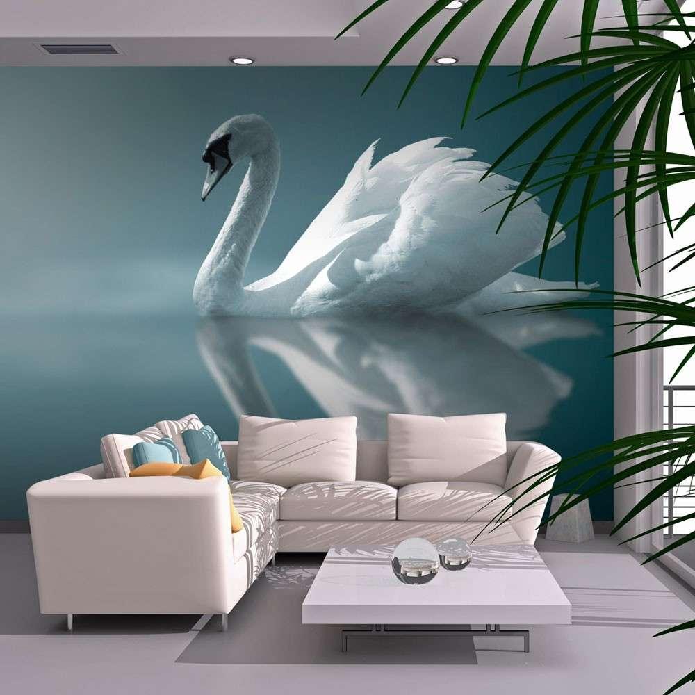 Fototapeta  Biały łabędź