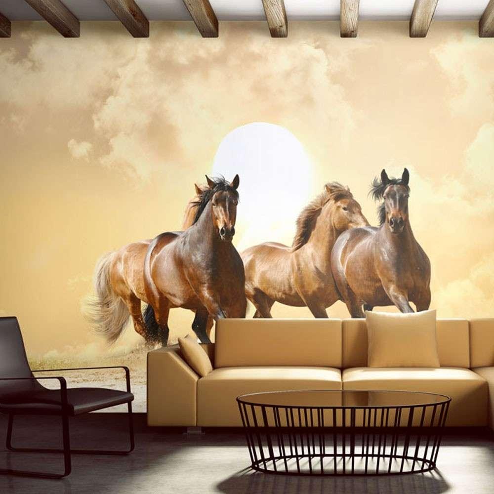 Fototapeta  Konie w galopie
