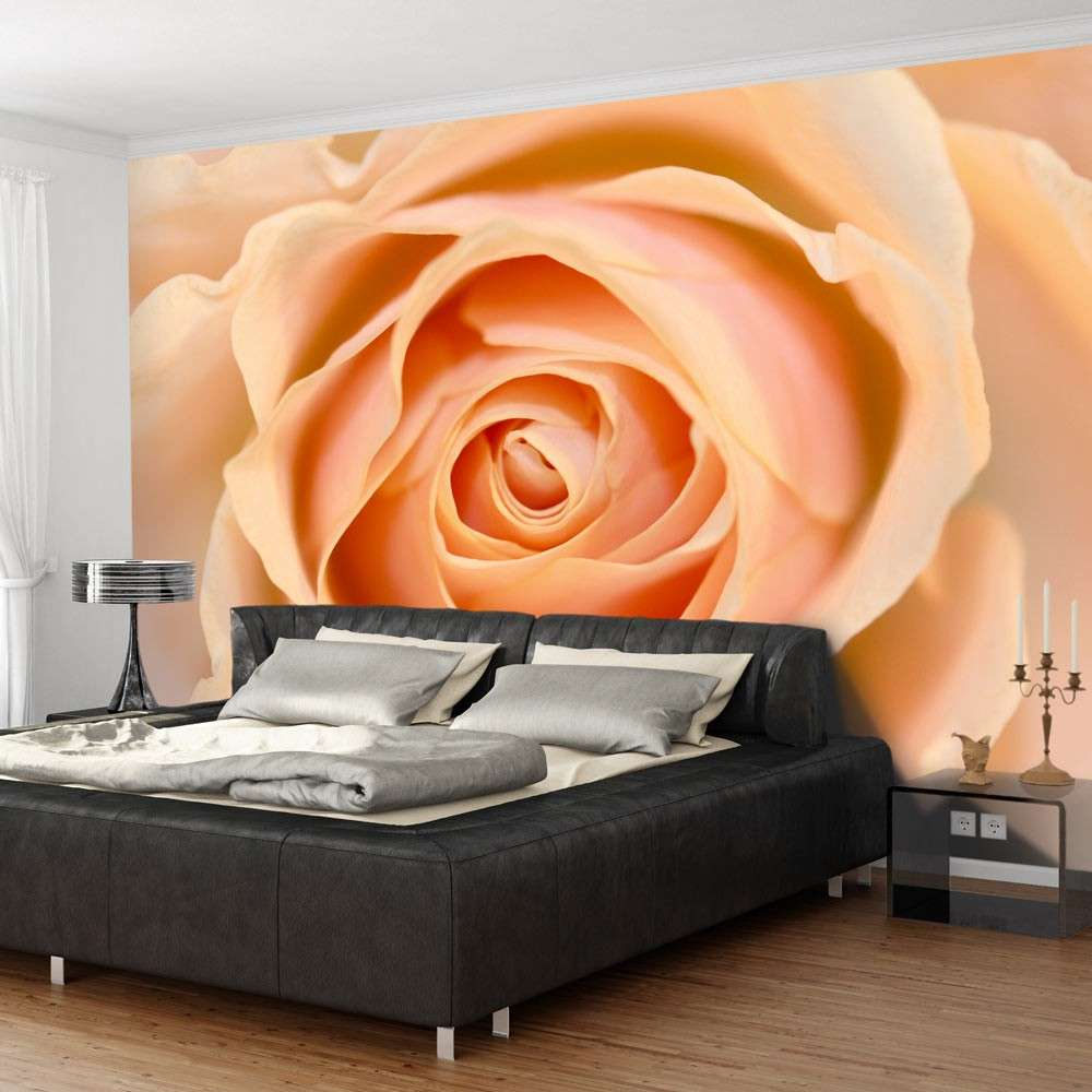 Fototapeta  Peachcolored rose