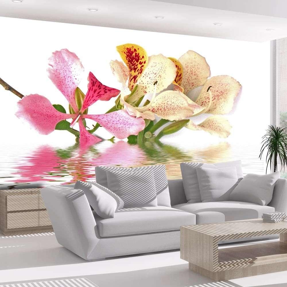 Fototapeta  Kwiaty tropikalne  drzewo storczykowe (bauhinia)