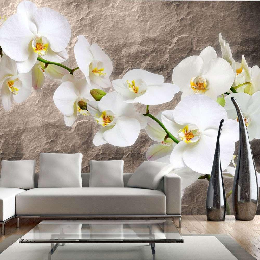 Fototapeta  Nieskazitelność orchidei