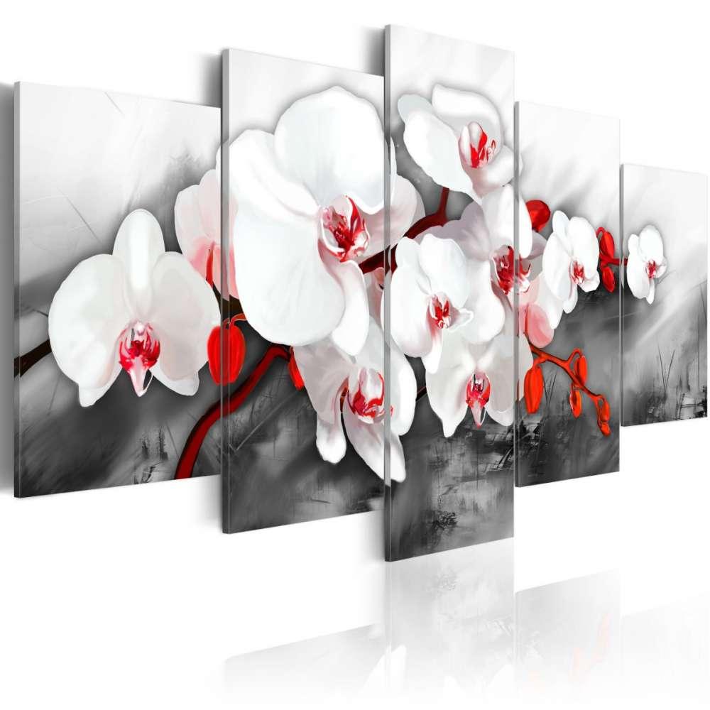 Obraz  Orchidea  jedyna w swoim rodzaju