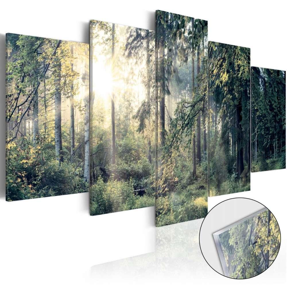 Obraz na szkle akrylowym  Baśniowy krajobraz [Glass]