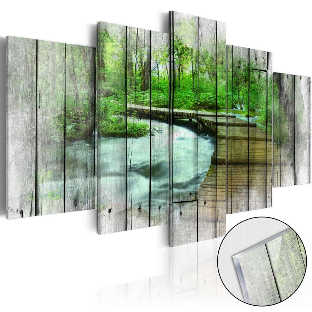 Obraz na szkle akrylowym  Las tajemnic [Glass]