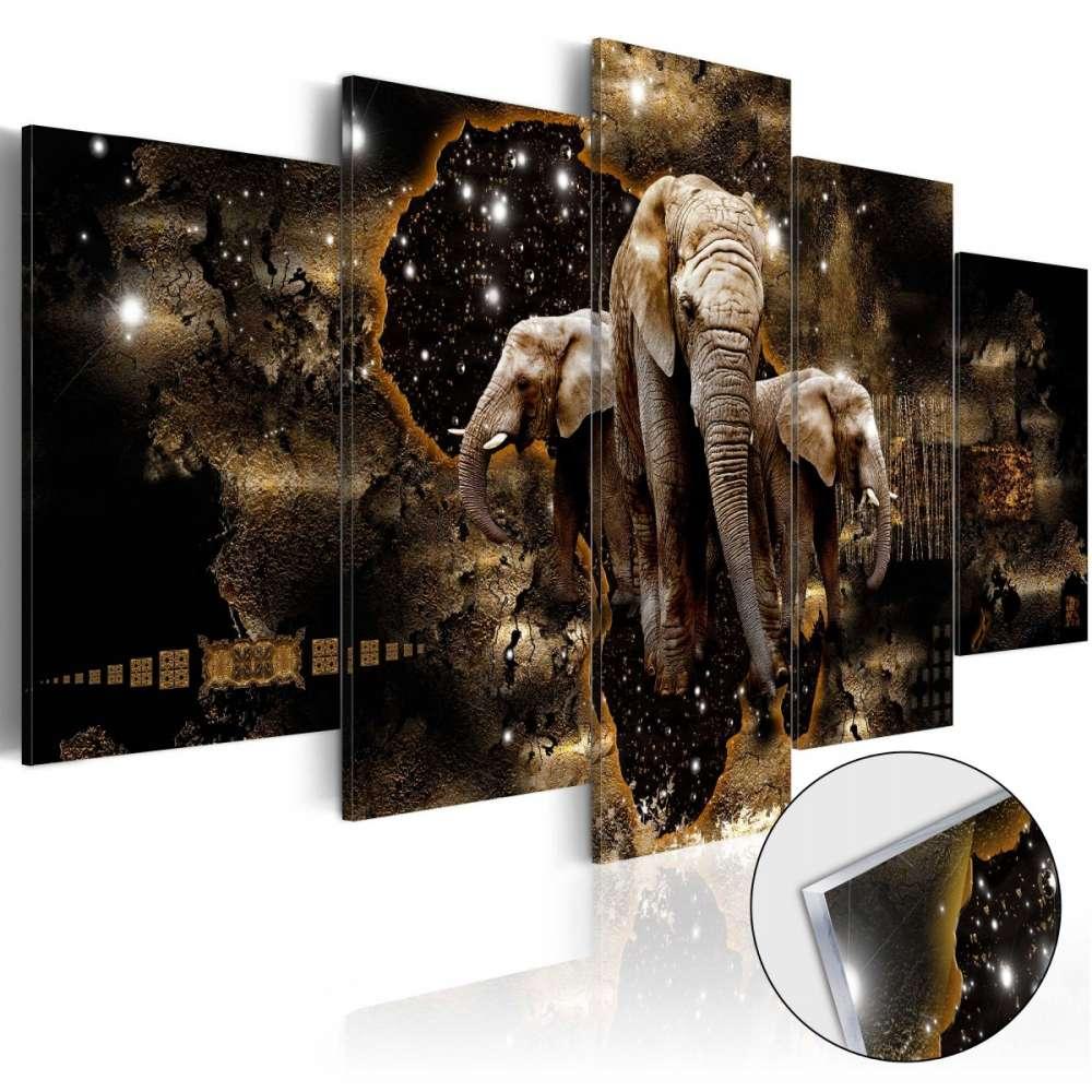 Obraz na szkle akrylowym  Brązowe słonie [Glass]