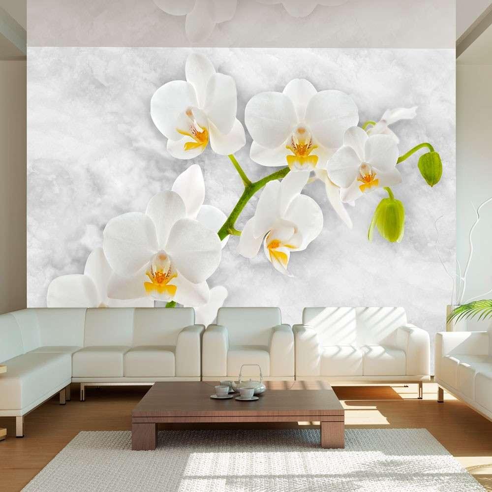 Fototapeta  Liryczna orchidea  biel