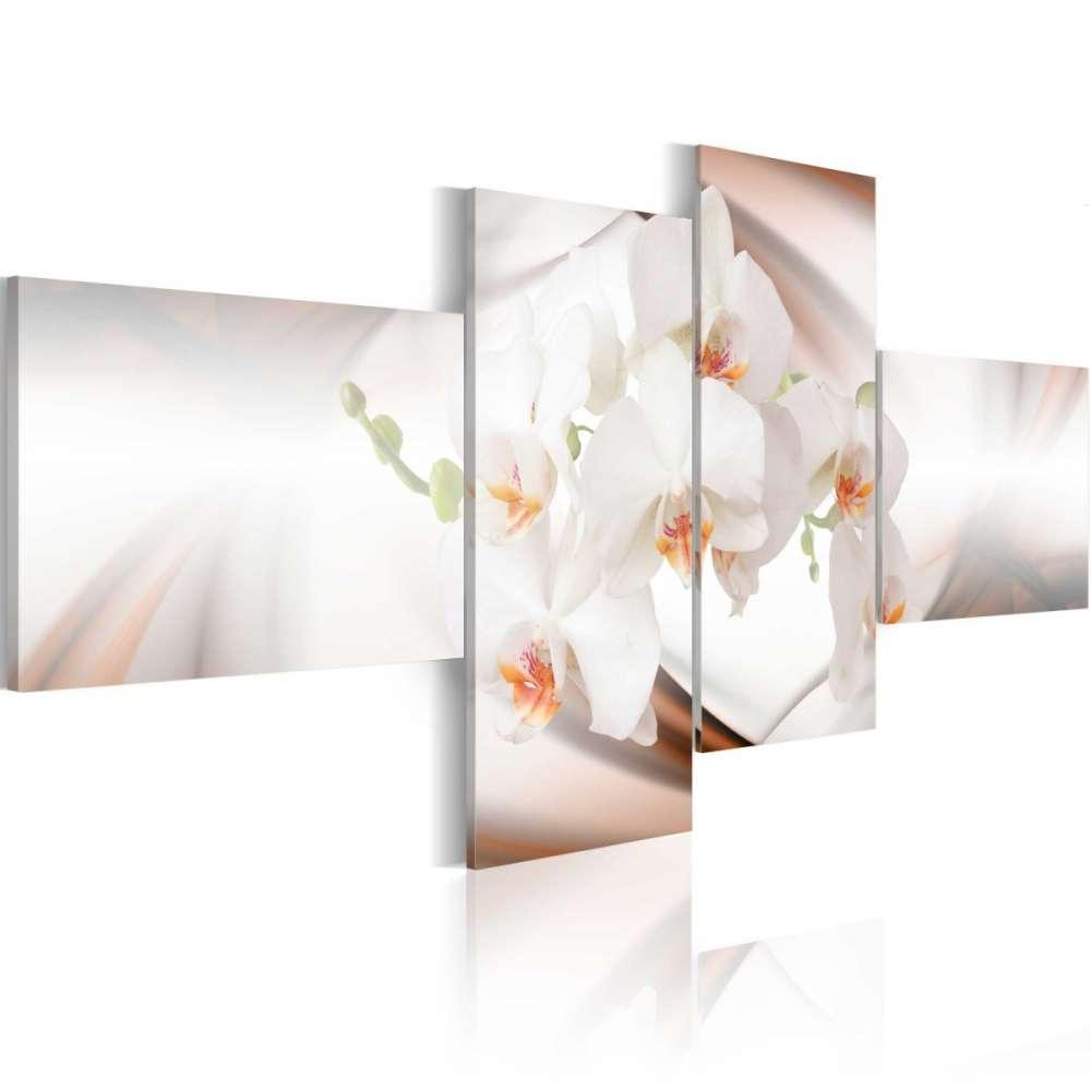 Obraz  Orchidea  najdelikatniejsza z wszystkich