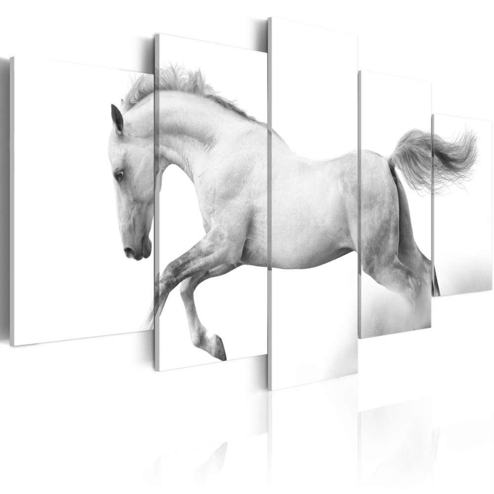 Obraz  Koń  pasja i wolność