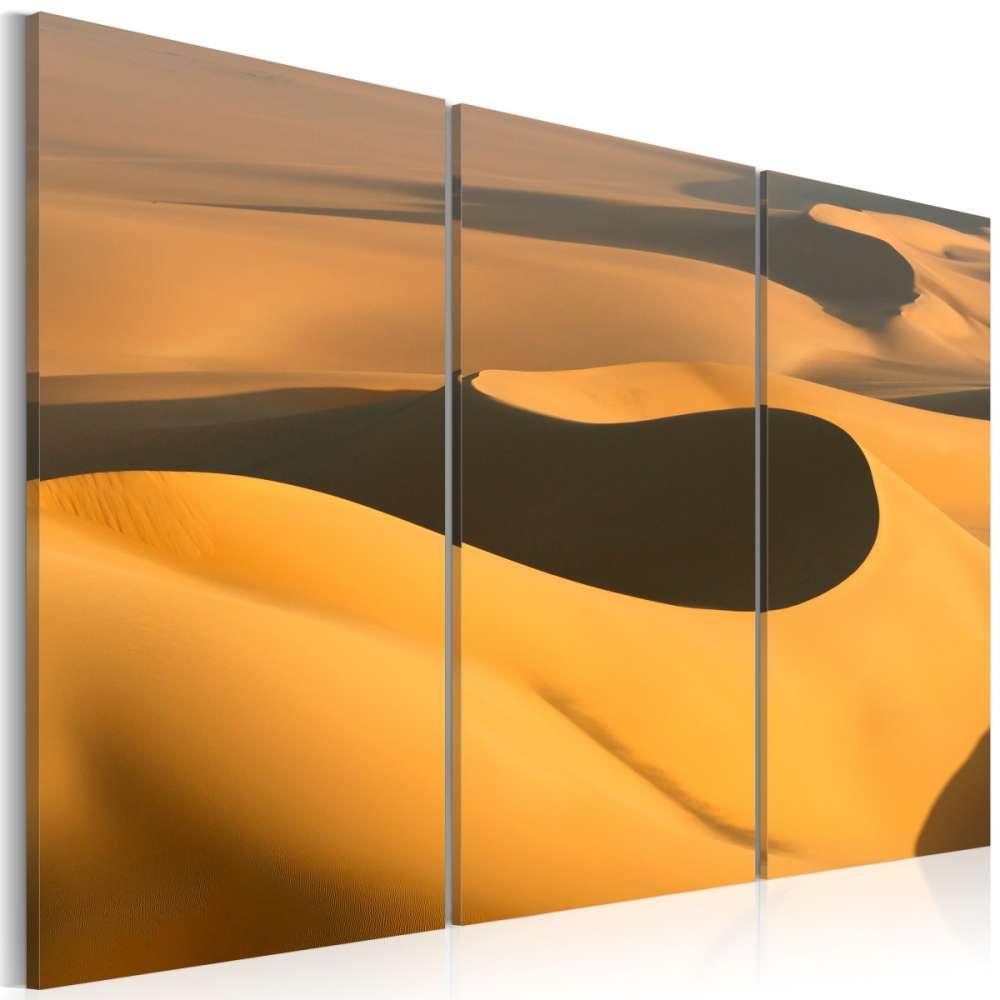 Obraz  Bezkresne piaski pustyni