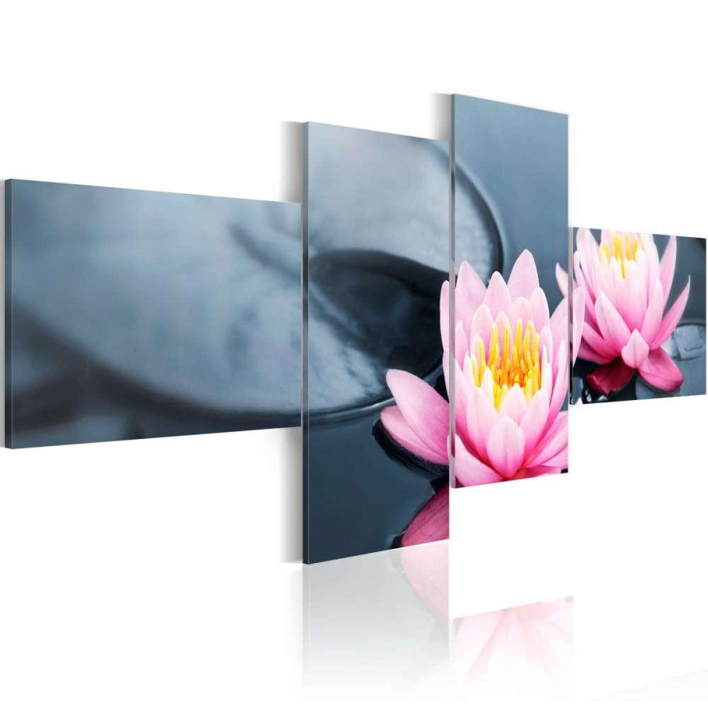 Obraz  Spokój lilii