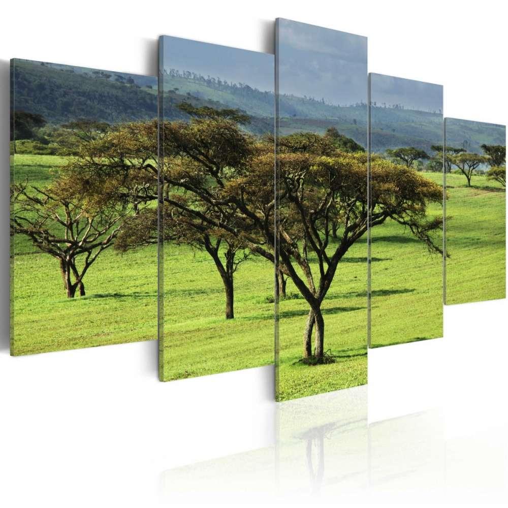 Obraz  Zielona Afryka