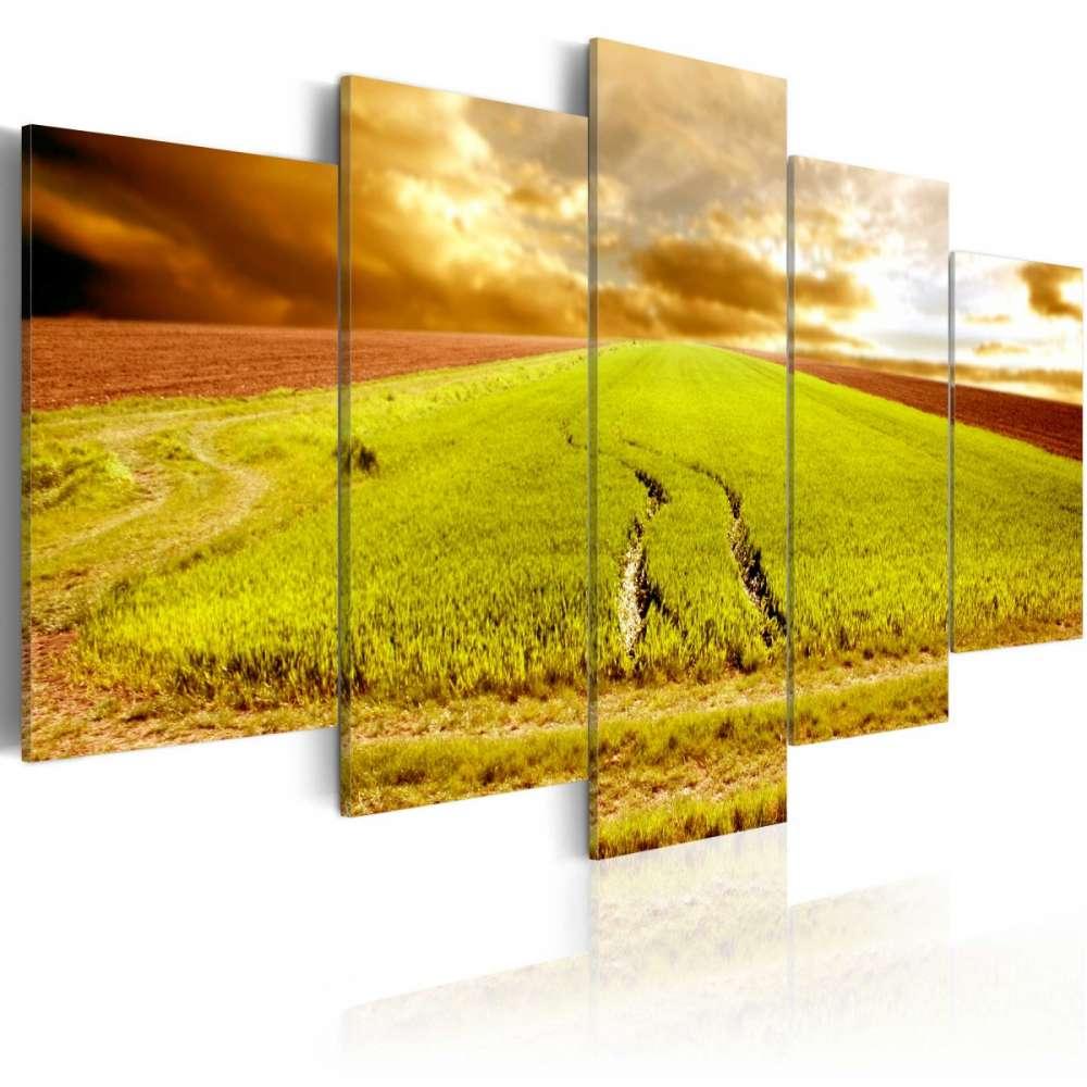 Obraz  Ślady kół na polu