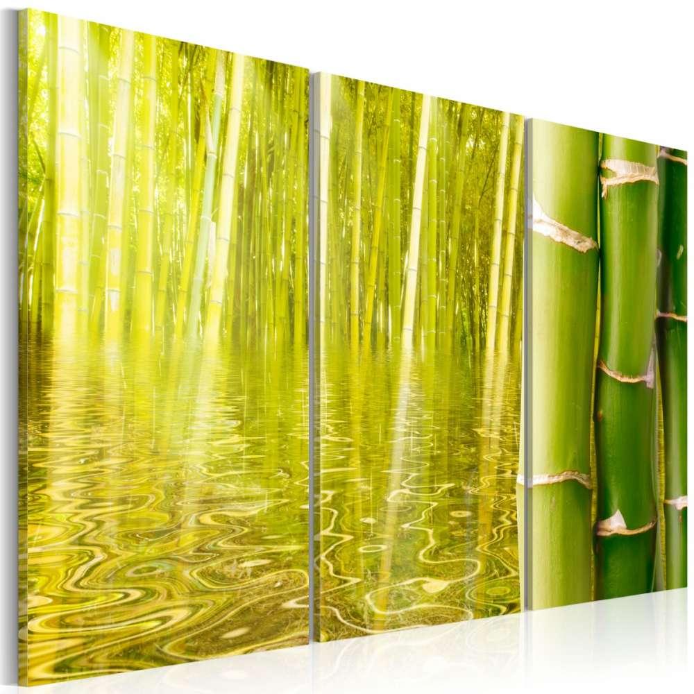 Obraz  Bambus w tafli wody