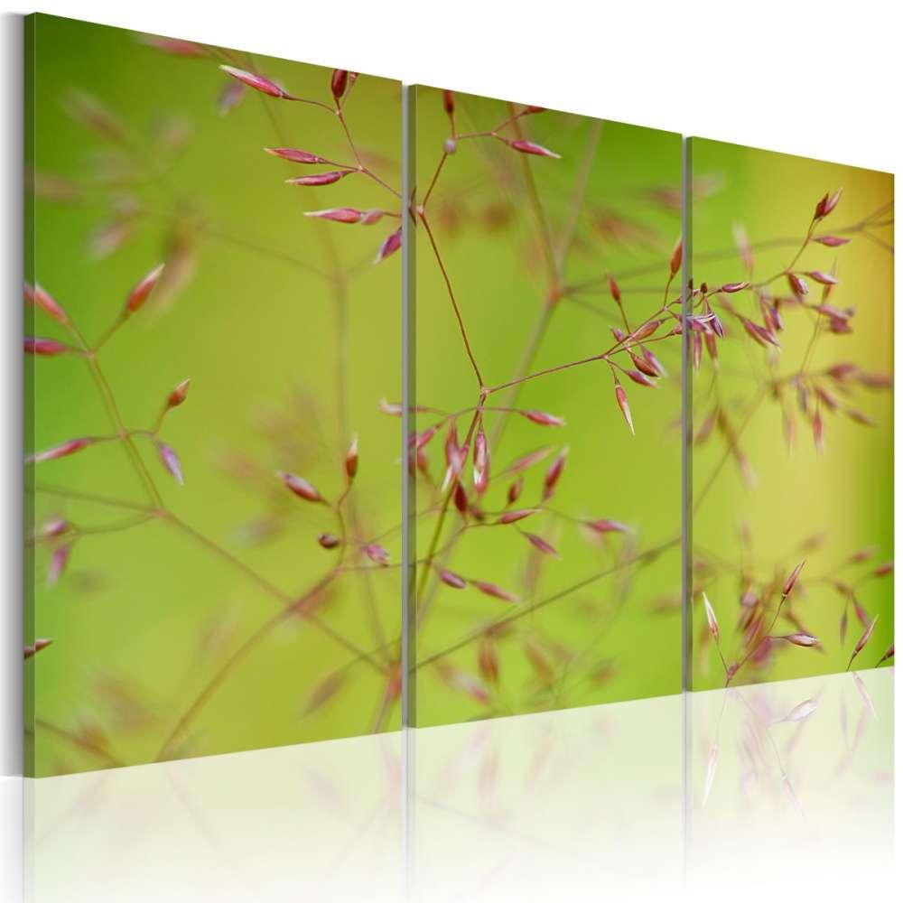 Obraz  Drobniutkie kwiatuszki