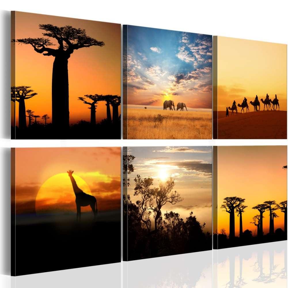 Obraz  Afrykańskie pejzaże