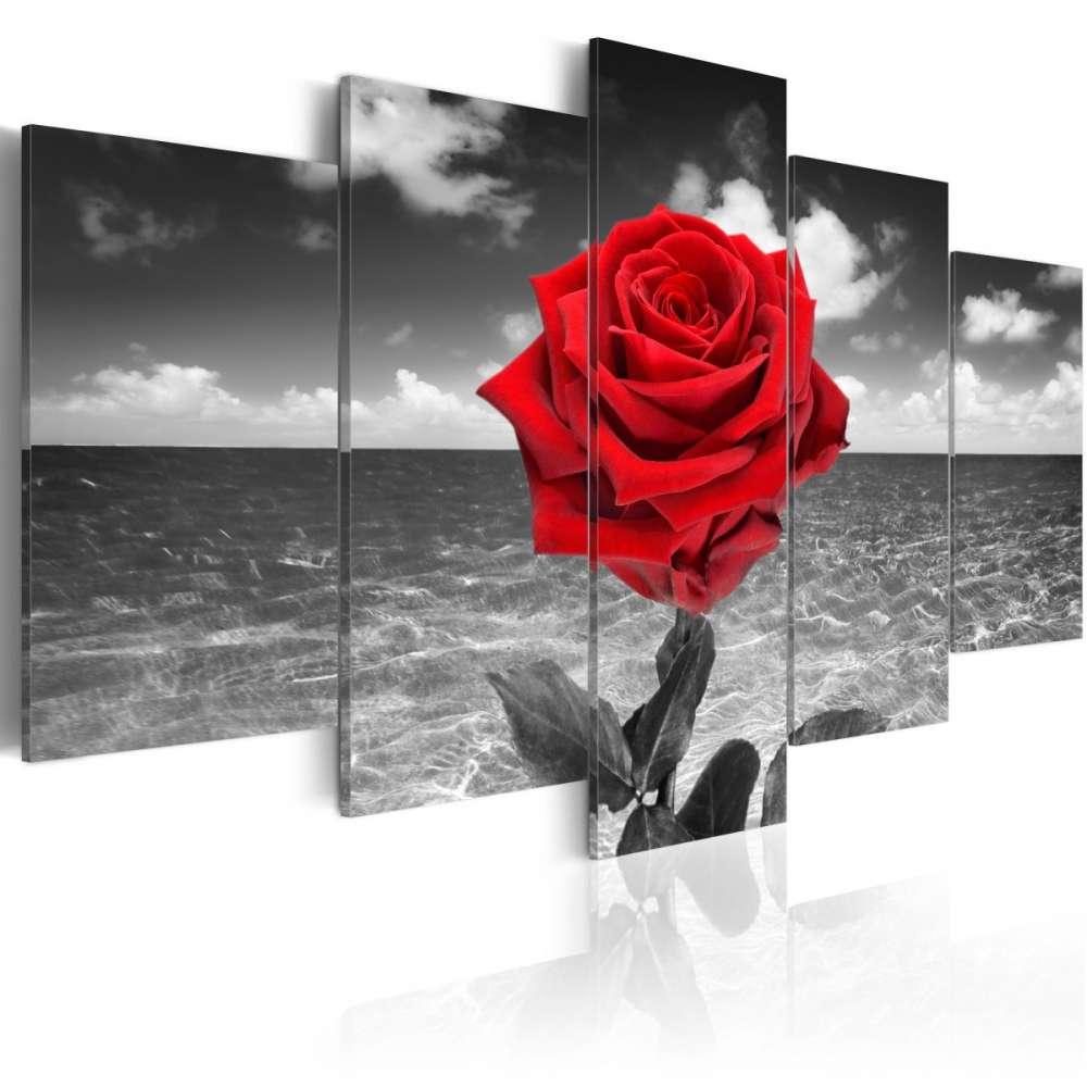 Obraz  Colour of love
