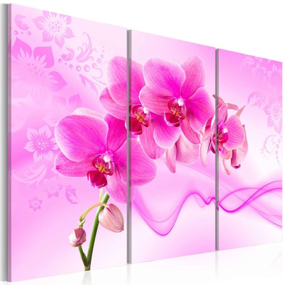 Obraz  Eteryczna orchidea  róż