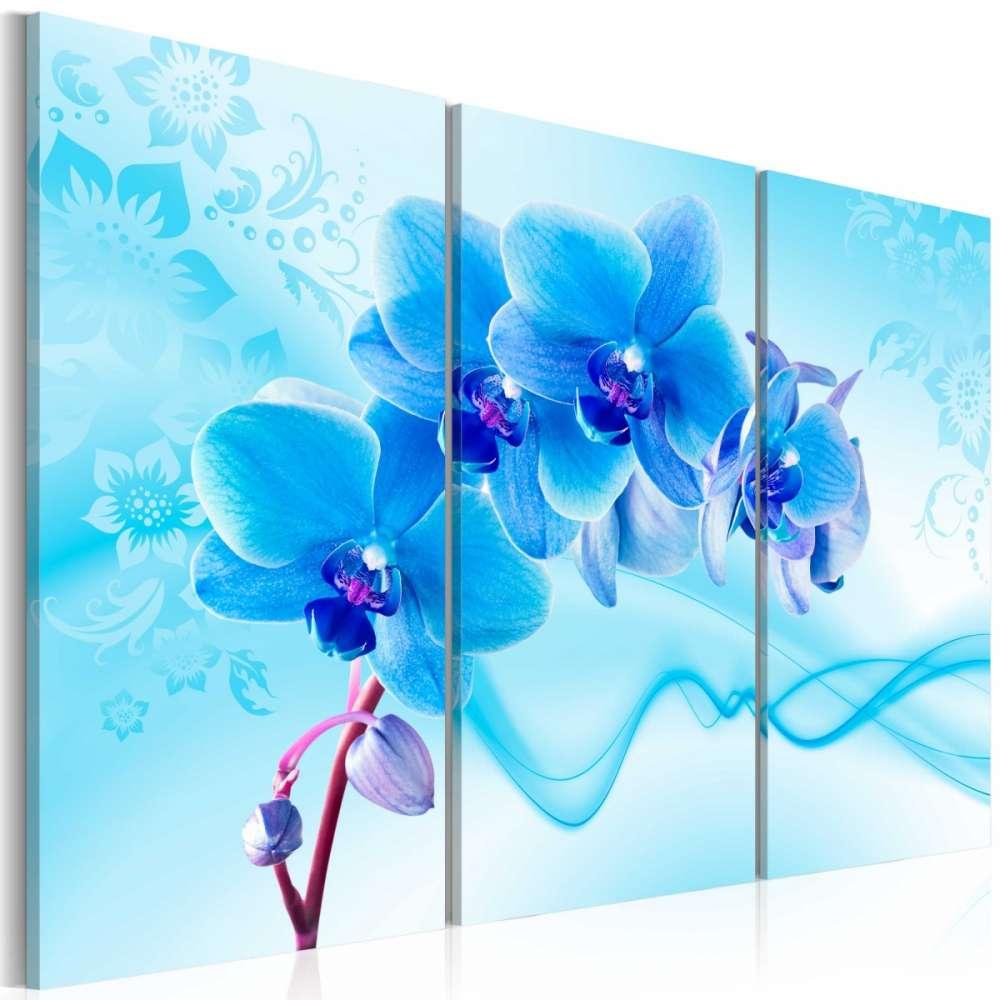 Obraz  Eteryczna orchidea  błękit